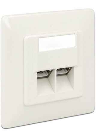 DELOCK Modular Wall Outlet Δικτύου